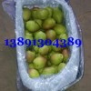 陕西冷红香酥梨价格,冷库库尔勒香梨产地批发价格